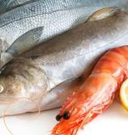 Žuvies produktų nauda organizmui